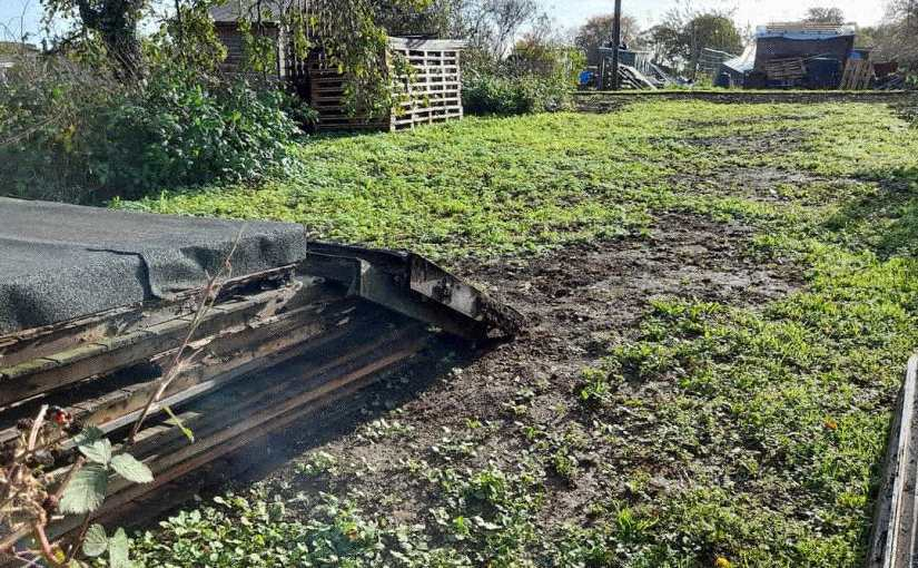 Wellingborough Eco Group Community Allotment