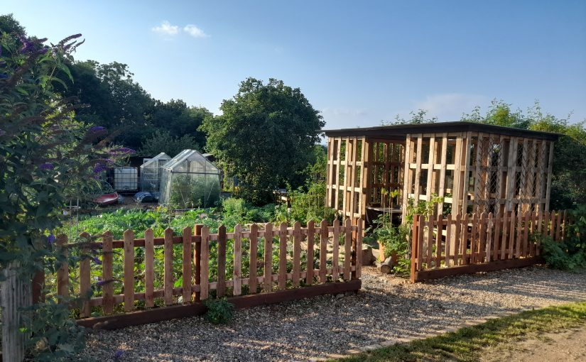 Community Allotment Young Carers